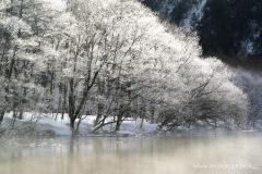 2008-09 -- 冬