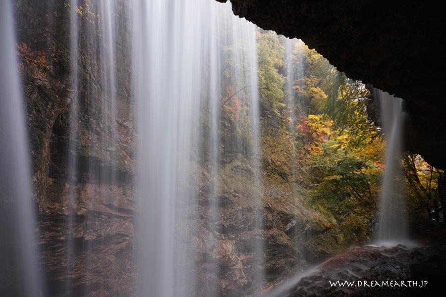 雷滝の黄葉