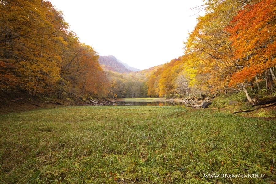 蔦温泉・長沼の紅葉