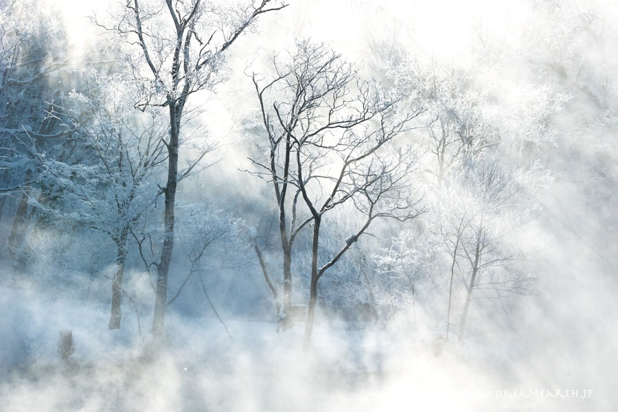 富良野市 鳥沼公園の霧氷
