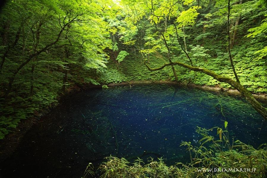十二湖・青池