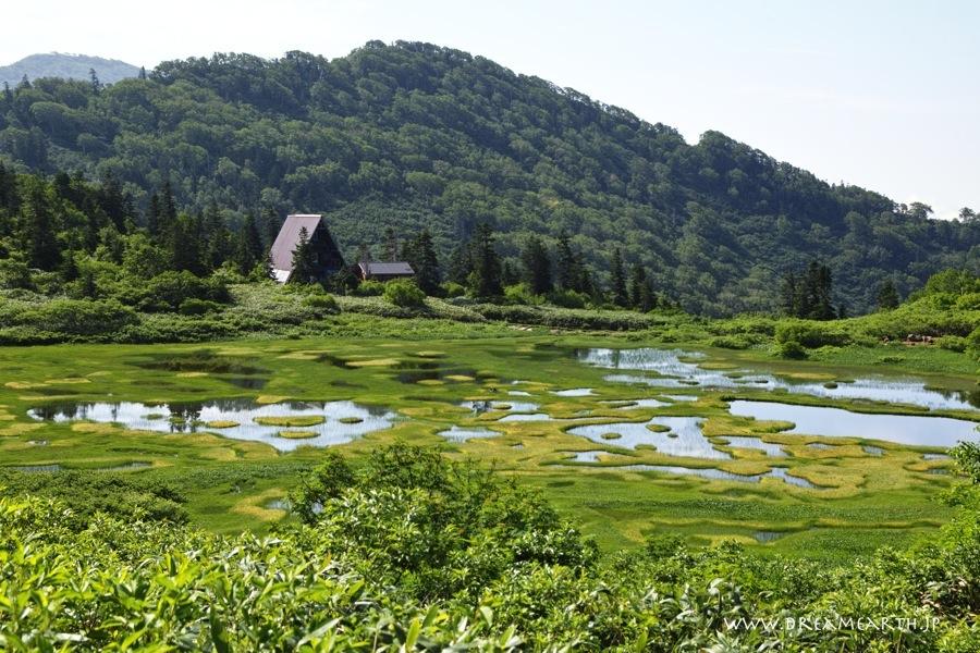 高谷池(火打山)