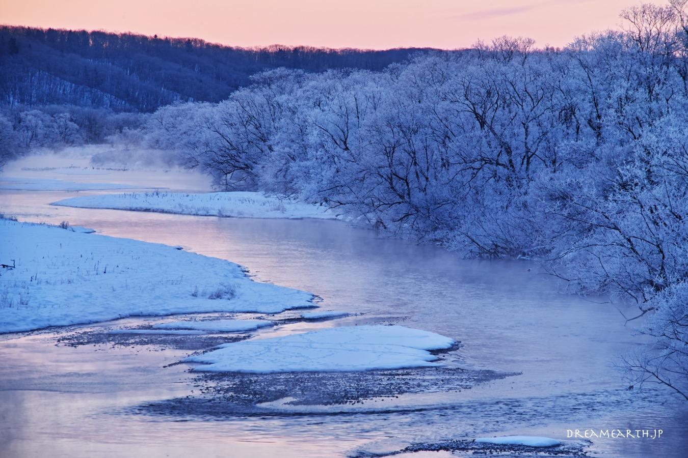 音羽橋の霧氷